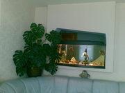 Подам аквариум 230 л с крышкой про-во Польша